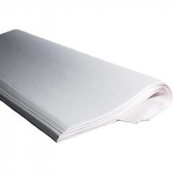 Resma papel manila blanca 1/4 31x43 p.500x2